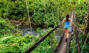 stock-photo-young-woman-walking-on-suspension-bridge-over-wainibau-stream-lavena-coastal-walk-taveuni-island-532856152